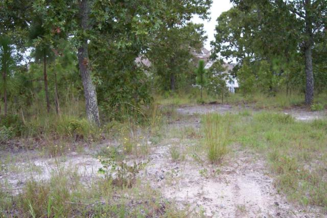 3024 Arundale Hill SW, Supply, NC 28462 (MLS #100030843) :: Century 21 Sweyer & Associates