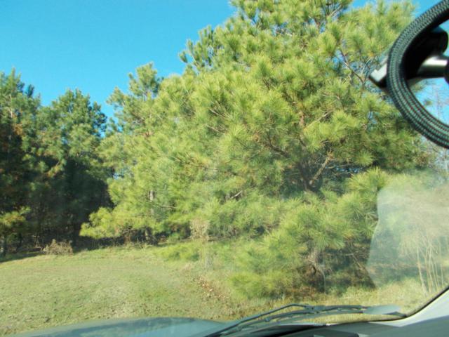 1634 Carriage Hill Drive, Kinston, NC 28504 (MLS #100031086) :: Century 21 Sweyer & Associates