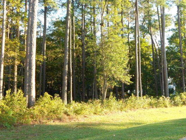 109 Wild Magnolia Drive, Beaufort, NC 28516 (MLS #100034980) :: Century 21 Sweyer & Associates