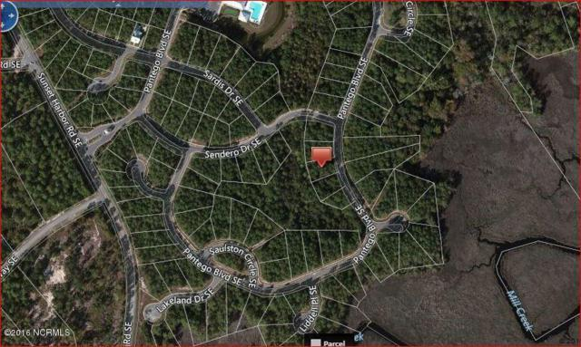 826 Pantego Boulevard SE, Bolivia, NC 28422 (MLS #100036561) :: Century 21 Sweyer & Associates