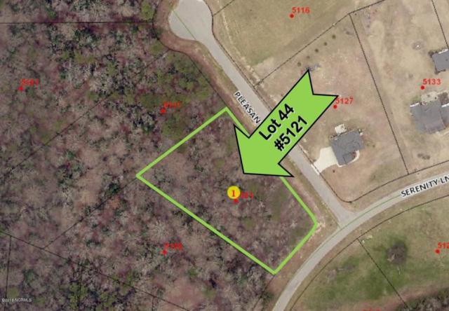 5121 Serenity Lane, Elm City, NC 27822 (MLS #100038685) :: Century 21 Sweyer & Associates