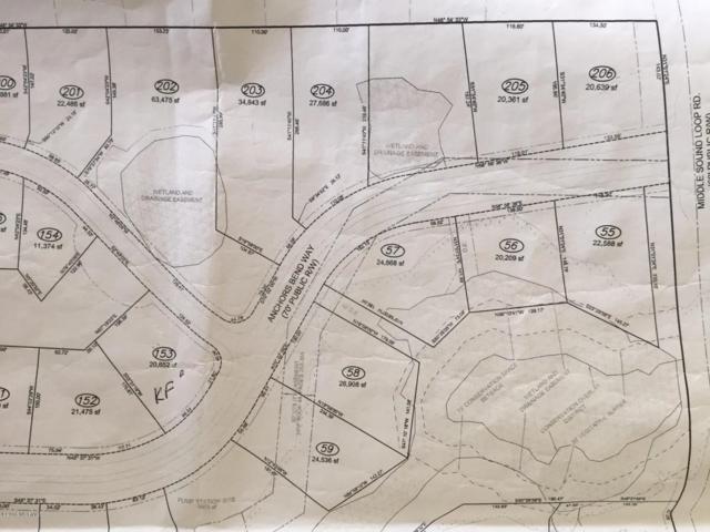 202 Baldwin Park Drive, Wilmington, NC 28411 (MLS #100039117) :: David Cummings Real Estate Team