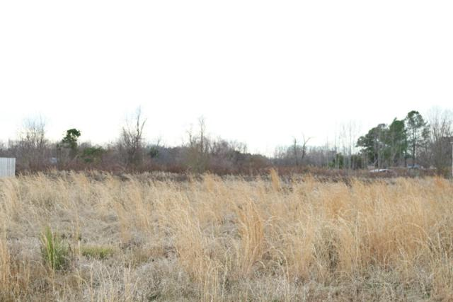 221 Mewborn Drive, Beulaville, NC 28518 (MLS #100043153) :: Century 21 Sweyer & Associates