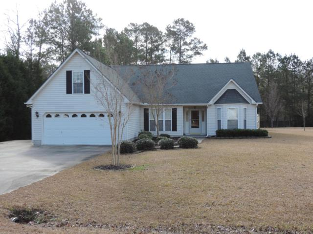 102 Seahorse Drive, Havelock, NC 28532 (MLS #100043664) :: Century 21 Sweyer & Associates