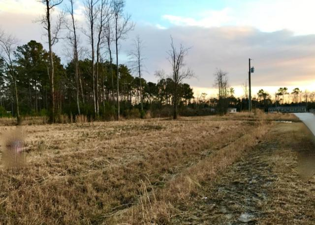 223 Mewborn Drive, Beulaville, NC 28518 (MLS #100044134) :: Century 21 Sweyer & Associates