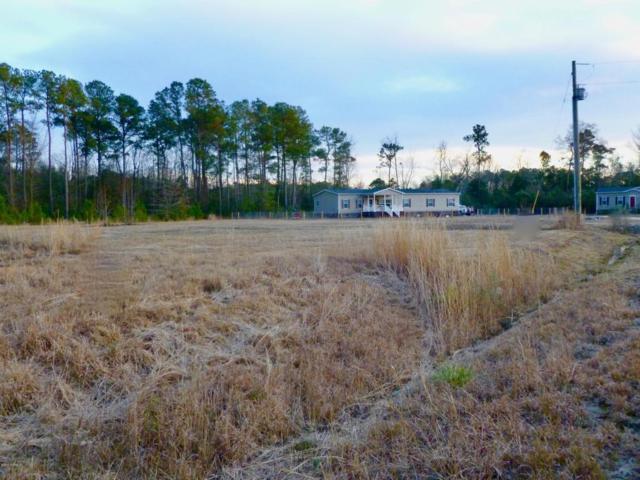 225 Mewborn Drive, Beulaville, NC 28518 (MLS #100044135) :: Century 21 Sweyer & Associates