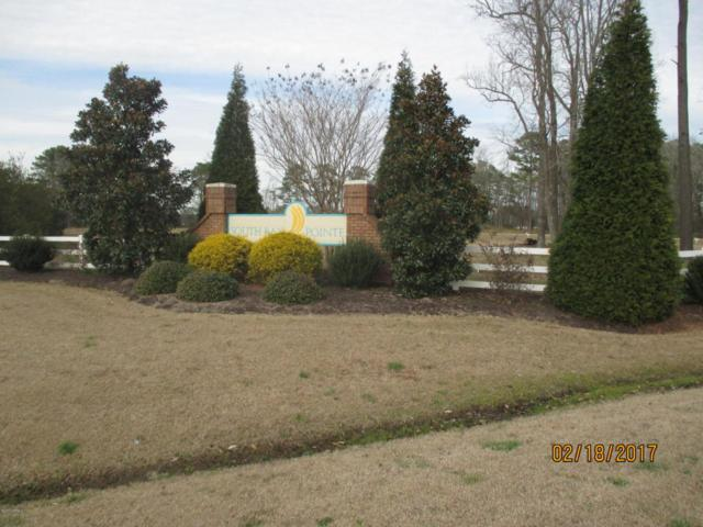Lot 25 Pointe Harbor Drive, Belhaven, NC 27810 (MLS #100048498) :: Century 21 Sweyer & Associates