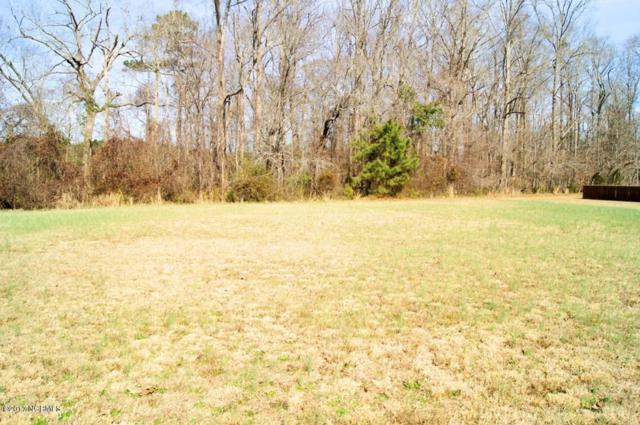 Lot 12 Sabre Pointe Drive, Bath, NC 27808 (MLS #100048698) :: Century 21 Sweyer & Associates