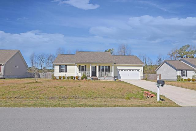139 Louie Lane, Jacksonville, NC 28540 (MLS #100052405) :: Century 21 Sweyer & Associates