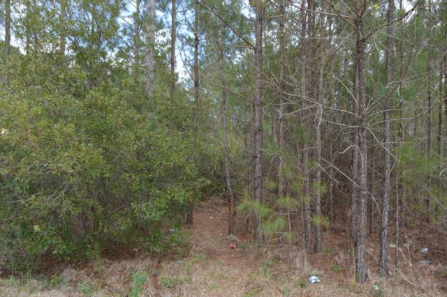 Lot 8 Bellhammon Forest Drive, Rocky Point, NC 28457 (MLS #100054926) :: Century 21 Sweyer & Associates