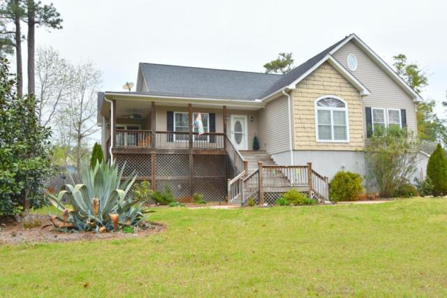 438 Motts Creek Road, Wilmington, NC 28412 (MLS #100056695) :: Century 21 Sweyer & Associates