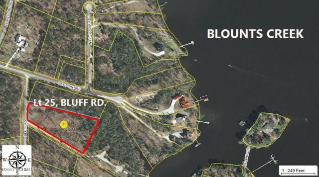 25 Bluff Road, Chocowinity, NC 27817 (MLS #100057224) :: Century 21 Sweyer & Associates