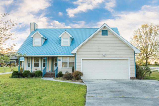 123 Gemstone Drive, Sneads Ferry, NC 28460 (MLS #100057804) :: Century 21 Sweyer & Associates