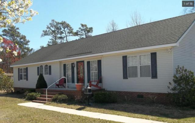 428 Sand Dollar Drive, Gloucester, NC 28528 (MLS #100057905) :: Century 21 Sweyer & Associates