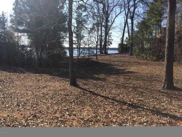 120 White Oak Bluff Road, Stella, NC 28582 (MLS #100058234) :: Harrison Dorn Realty