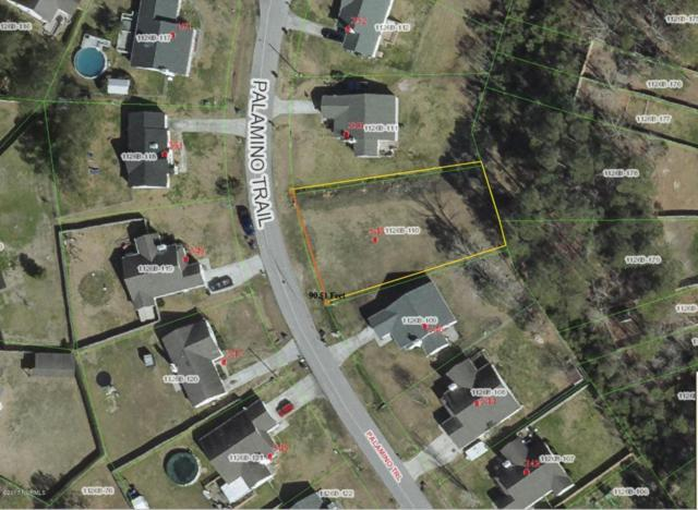 348 Palamino Trail, Jacksonville, NC 28546 (MLS #100059308) :: Century 21 Sweyer & Associates