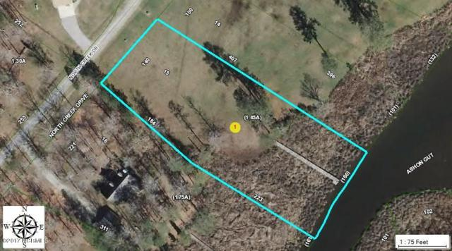 Lot 15 N Creek Drive, Belhaven, NC 27810 (MLS #100059697) :: Century 21 Sweyer & Associates