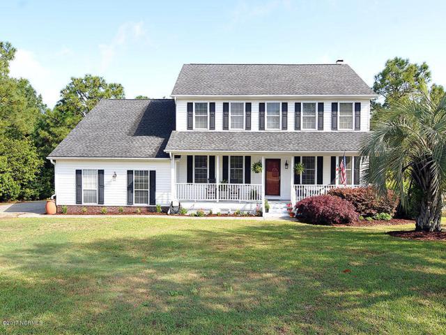 113 Colquitt Drive, Wilmington, NC 28412 (MLS #100059708) :: Century 21 Sweyer & Associates