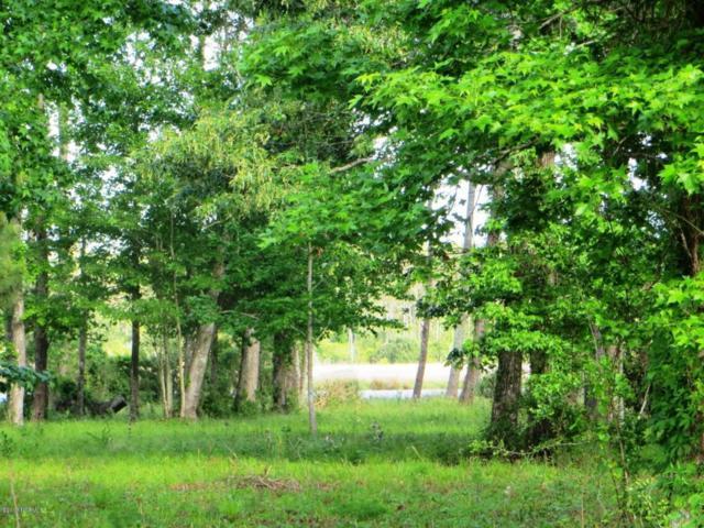 168 Herring Pond Court, Beaufort, NC 28516 (MLS #100060874) :: Century 21 Sweyer & Associates