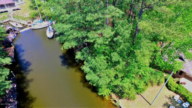 202 Whittaker Point Road, Oriental, NC 28571 (MLS #100061030) :: RE/MAX Essential