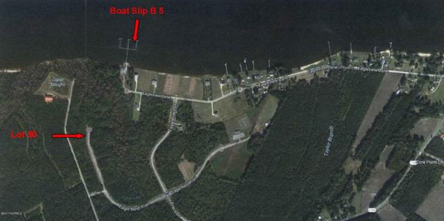 50 Eagle Nest Trail, Blounts Creek, NC 27814 (MLS #100062607) :: Century 21 Sweyer & Associates