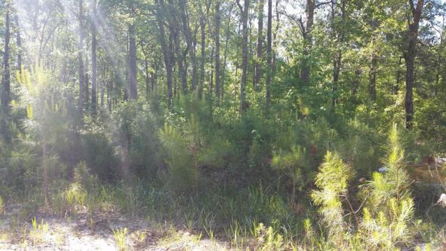 7853 Crystal Lake Drive NE, Leland, NC 28451 (MLS #100063127) :: Century 21 Sweyer & Associates