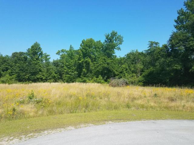 113 Kinsaw Court, Vanceboro, NC 28586 (MLS #100063448) :: Century 21 Sweyer & Associates