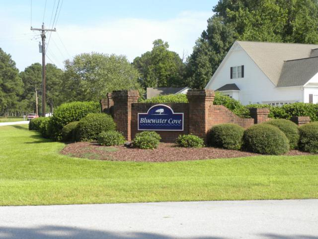 Address Not Published, Swansboro, NC 28584 (MLS #100063591) :: Century 21 Sweyer & Associates
