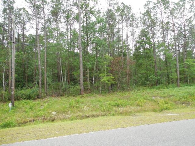 431 Island Creek Drive, Wilmington, NC 28411 (MLS #100064625) :: Century 21 Sweyer & Associates