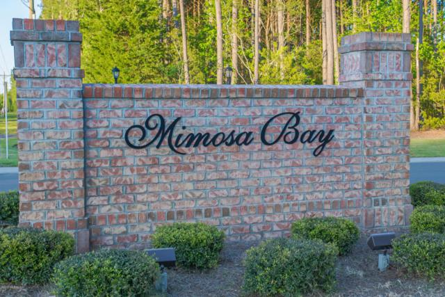 312 E Dolphin View, Sneads Ferry, NC 28460 (MLS #100066288) :: Century 21 Sweyer & Associates