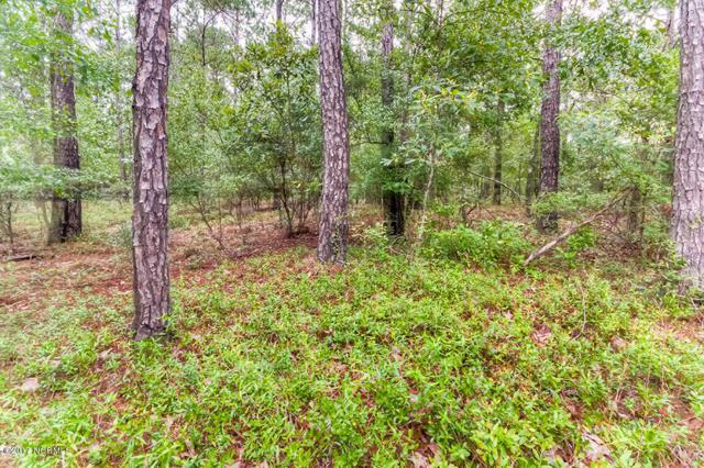 10209 Wildlife Drive SE, Leland, NC 28451 (MLS #100067139) :: Century 21 Sweyer & Associates