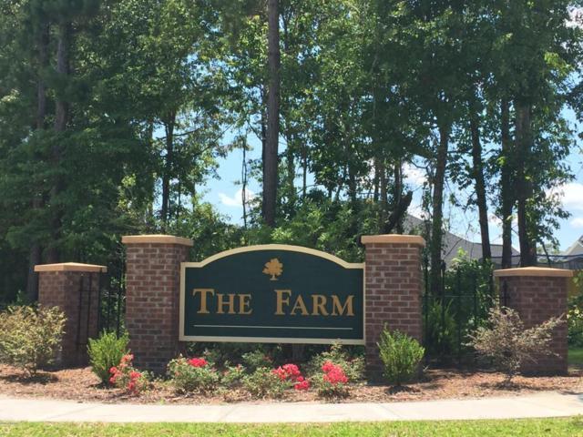 905 Haystack Lane, Jacksonville, NC 28546 (MLS #100067674) :: Courtney Carter Homes