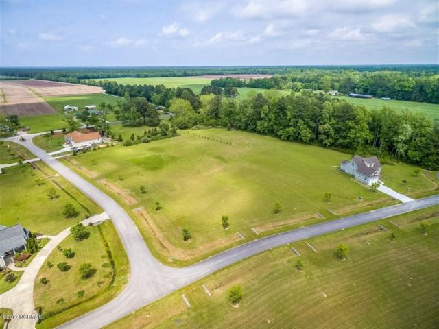 65 Natures Run Drive, Oriental, NC 28571 (MLS #100068497) :: The Keith Beatty Team