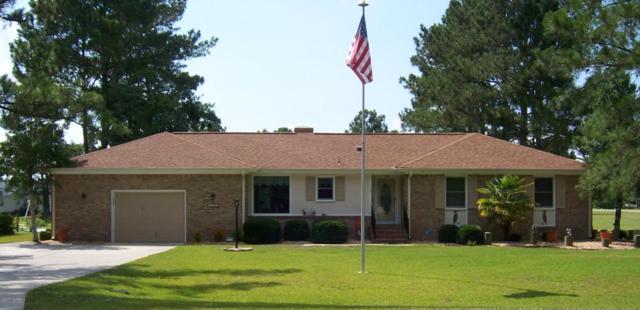 1107 Caracara Drive, New Bern, NC 28560 (MLS #100068553) :: Century 21 Sweyer & Associates