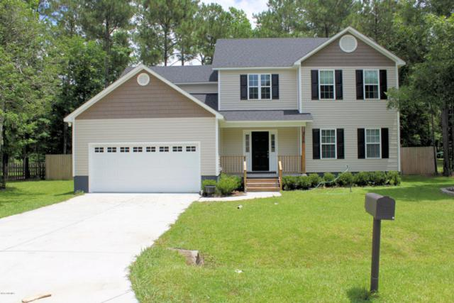 316 Sugarberry Court, Jacksonville, NC 28540 (MLS #100068564) :: Century 21 Sweyer & Associates