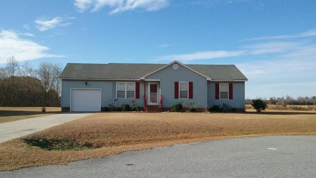 3146 Ricky Court, La Grange, NC 28551 (MLS #100068745) :: Century 21 Sweyer & Associates