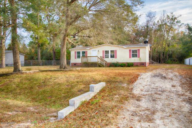 224 Cedar Hollow Court, Sneads Ferry, NC 28460 (MLS #100068975) :: Century 21 Sweyer & Associates