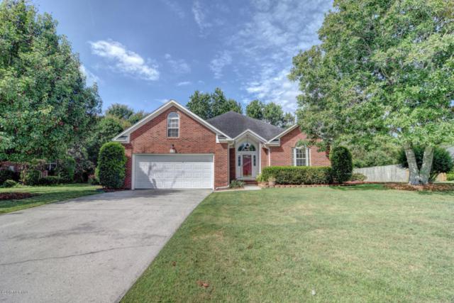 4012 Chandler Drive, Wilmington, NC 28405 (MLS #100068988) :: Century 21 Sweyer & Associates