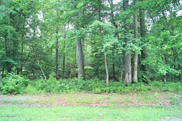 Lot 2 Island Drive, Chocowinity, NC 27817 (MLS #100069287) :: Century 21 Sweyer & Associates