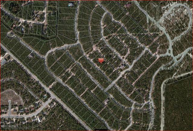 2944 N Magellan Boulevard SE, Bolivia, NC 28422 (MLS #100069807) :: Century 21 Sweyer & Associates