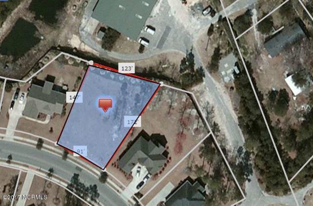 1529 Grandiflora Drive, Leland, NC 28451 (MLS #100069893) :: RE/MAX Essential