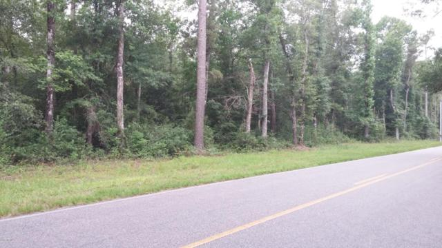 Lot 15 Mt Misery Road NE, Leland, NC 28451 (MLS #100069904) :: RE/MAX Essential