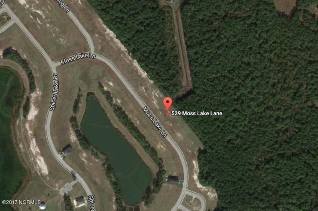 529 Moss Lake Lane, Holly Ridge, NC 28445 (MLS #100070030) :: RE/MAX Essential