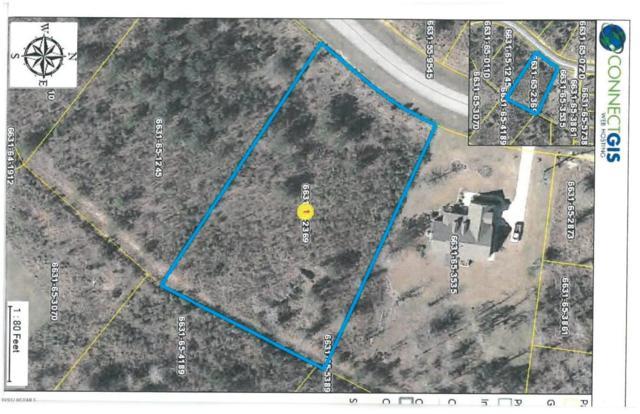 Lot 82 Eagle Trace Drive, Blounts Creek, NC 27814 (MLS #100073343) :: Century 21 Sweyer & Associates