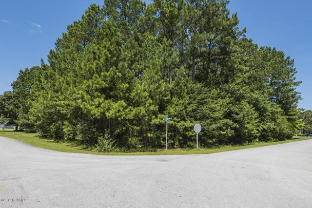 202 Jacqueline Drive, Havelock, NC 28532 (MLS #100073377) :: Courtney Carter Homes