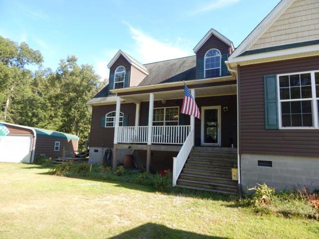 125 Mcdaniel Fork Road, Trenton, NC 28585 (MLS #100075693) :: Harrison Dorn Realty
