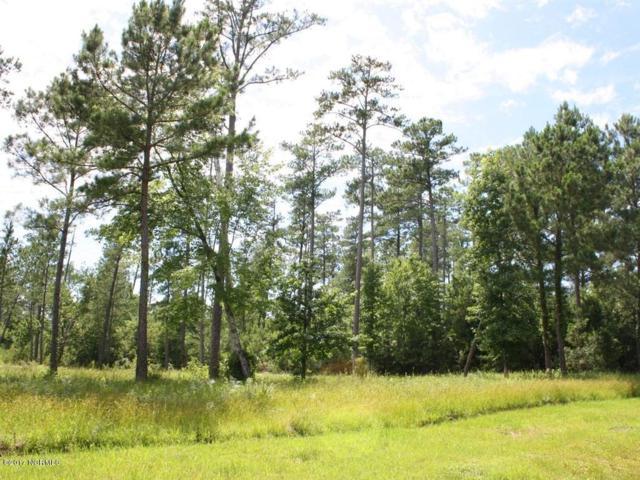 553 Arant Farm Road, Merritt, NC 28556 (MLS #100076205) :: Century 21 Sweyer & Associates