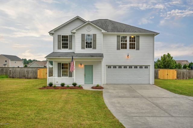 815 Haw Branch Road, Beulaville, NC 28518 (MLS #100078431) :: Courtney Carter Homes