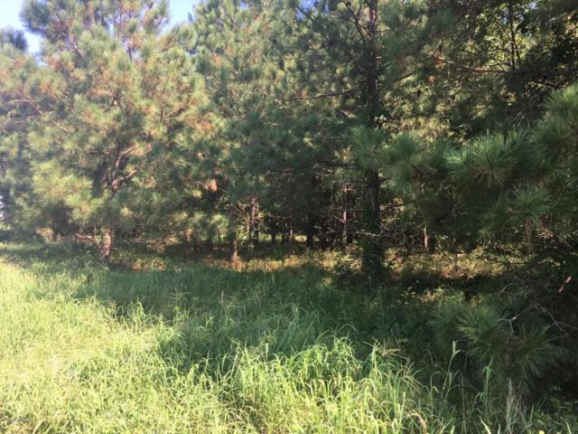 3118 Brakefield Drive, La Grange, NC 28551 (MLS #100078436) :: Courtney Carter Homes