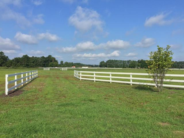 Lot 79 Dallas Paul Road, Belhaven, NC 27810 (MLS #100078520) :: Century 21 Sweyer & Associates